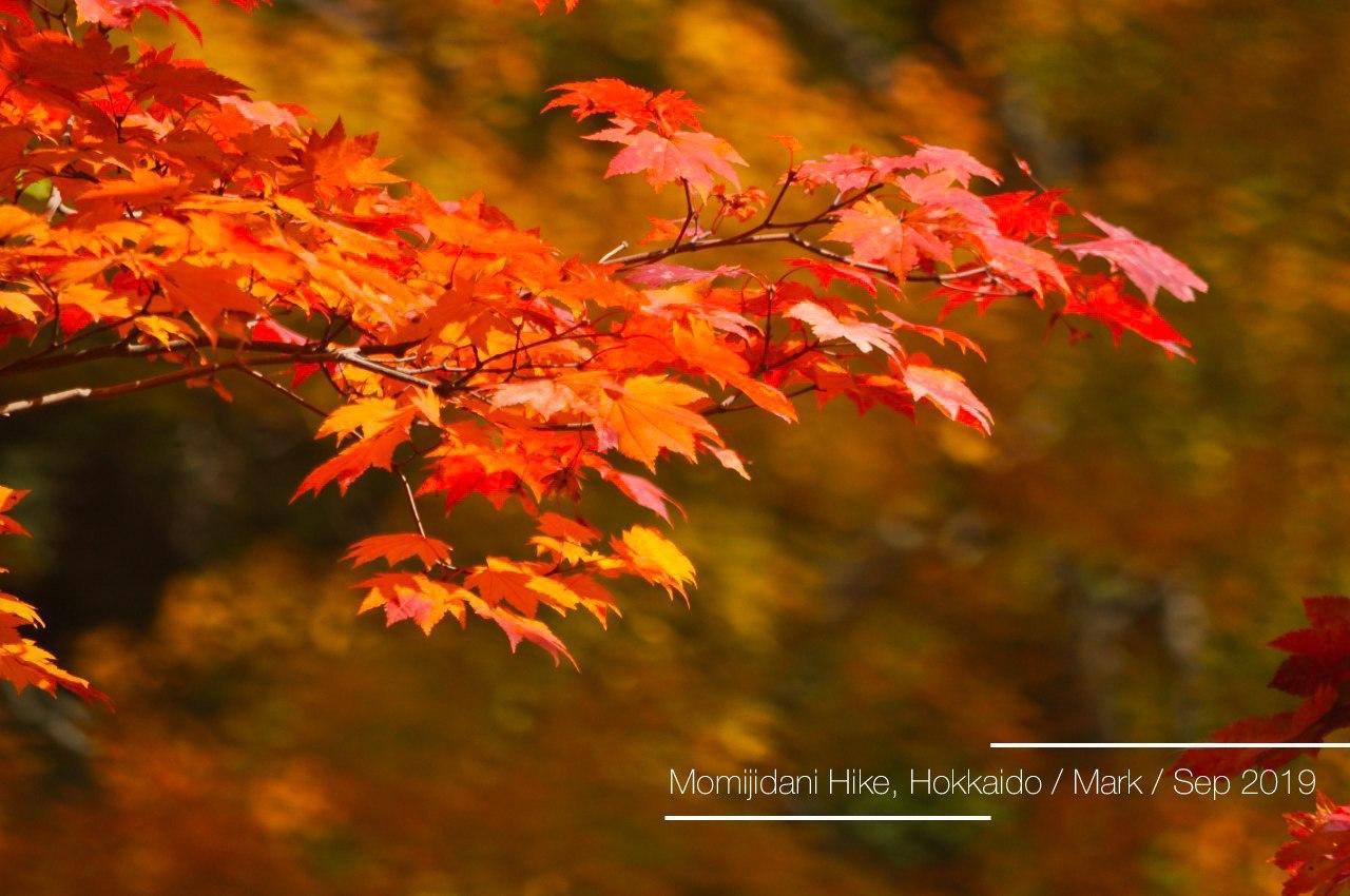 Momijidani Hike, Hokkaido